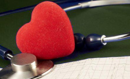 Cursos Naya Cardiologia Veterinária