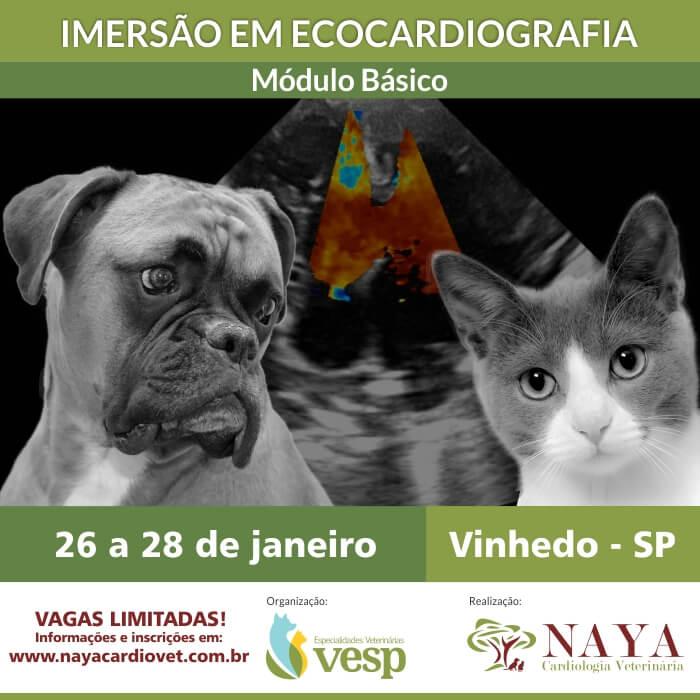 Folder X IMERSAO BASICO site naya cardiologia veterinaria