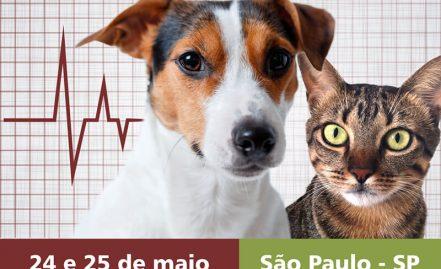 Tópicos em Cardiologia Clínica de Cães e Gatos